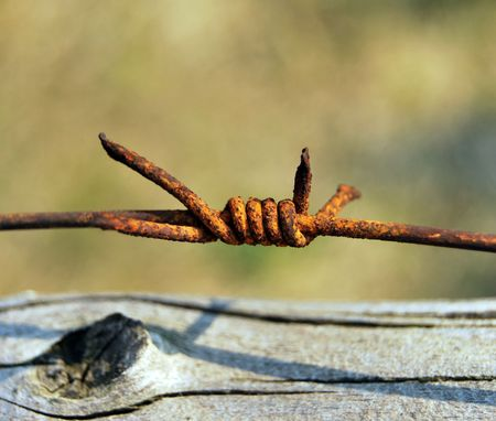 barbed Stock Photo - 4617816