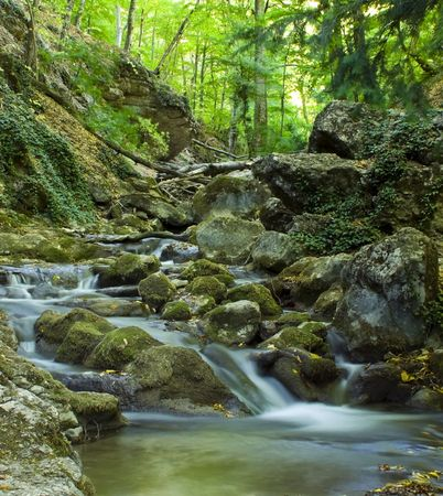 The beautiful running water in forest  river