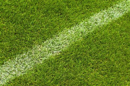 Soccer grass and white lines  photo
