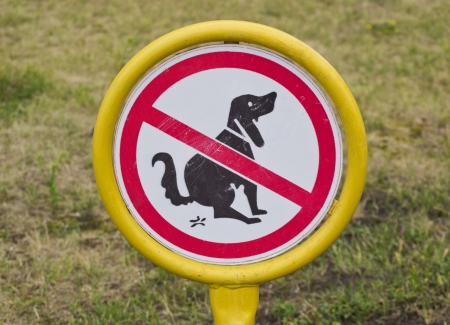shit: no sign of the dogs to shit on the lawn  Stock Photo