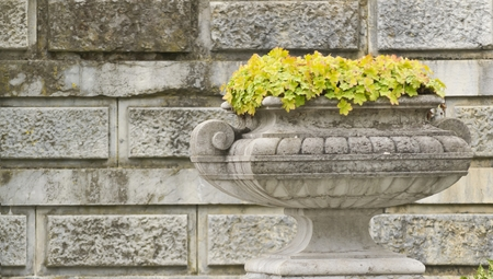 stone bowl with flowers on the background wall photo