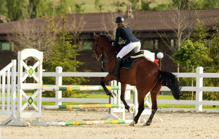 A rider on a horse takes a barrier