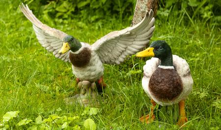 figurines of ducks on a green lawn Banco de Imagens