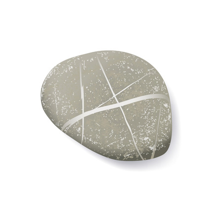 vector realistic striped pebble