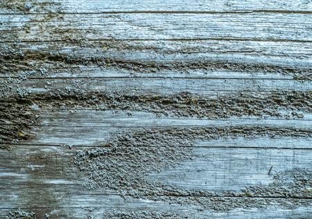 rough: rough wood board
