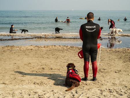 Cervia, Ravenna, Italy - 10/14/2018. Rescue dogs training on the beach.