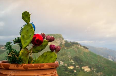 Christmas in Castelmola, Messina province, Sicily, Italy. Foto de archivo - 114404678