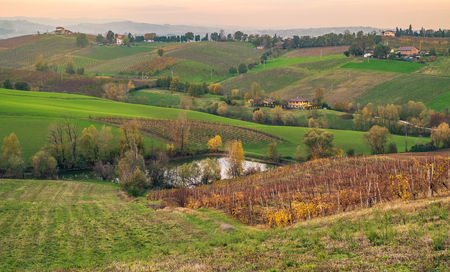 Cultivated fields and vineyards in the southwest of Bologna: Protected Geographical Indication area of typical wine named Pignoletto. Bologna province, Emilia Romagna, Italy.