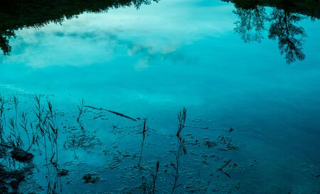 Sky and trees reflecting in the pond water at the dusk, background texture.