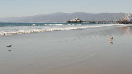 Ocean waves and sandy california beach, classic ferris wheel in amusement park on pier in Santa Monica pacific ocean resort. Summertime iconic view, symbol of Los Angeles, CA USA. Travel concept.