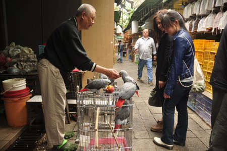 HONG KONG - 23th FEBRUARY, 2015 Side view of women walking on bird market and talking to vendor selling birds, Vendor and buyers on bird market Editorial