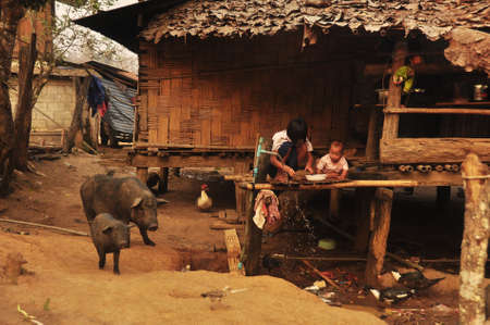 CHIANG MAI, THAILAND - MARCH 1, 2013: People in poor oriental village, View of children and cattle in traditional village with simple wooden houses. Nothern tribes - Akha, Lisu, Karen, Lahu Editorial