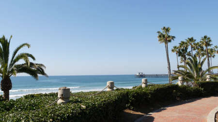 Pacific ocean beach, green palm trees and pier. Sunny day, tropical waterfront resort. Vista viewpoint in Oceanside, near Los Angeles California USA. Summer sea coast aesthetic, seascape and blue sky.