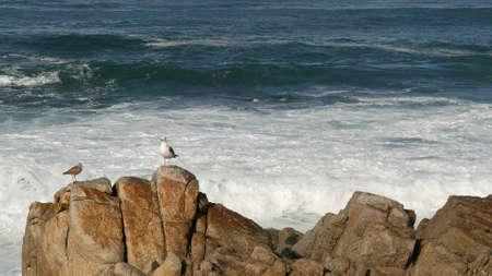 Ocean waves and rocks, Monterey, Northern California, USA. 17-mile drive near Big Sur, seaside golf tourist resort on Pacific Coast Highway. Splashing water and sea breeze of Pebble beach. Road trip.