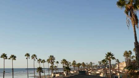 Palm tree perspective in Oceanside, California waterfront pacific ocean tropical beach resort, USA. Summertime sea coastline vacations. Palmtrees on beachfront seacoast boardwalk. Daytime blue sky.