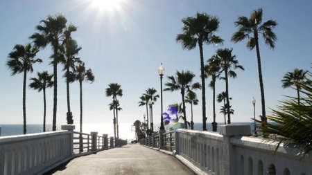 Palm trees and pier, Oceanside tropical ocean beach resort, summertime California coast on sunny day, USA. Dazzling sun glare flare, bright sunburst in clear sky. Sunshine and wind, sunlit summer sea.