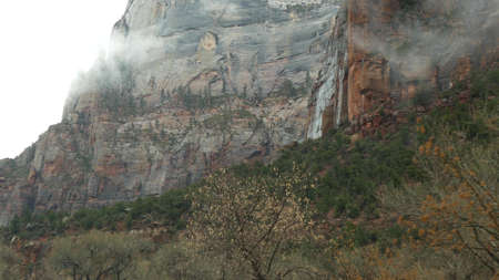 Road trip, driving auto in Zion Canyon, Utah, USA. Hitchhiking traveling in America, autumn journey. Red alien steep cliffs, rain and bare trees. Foggy weather and calm fall atmosphere. View from car.