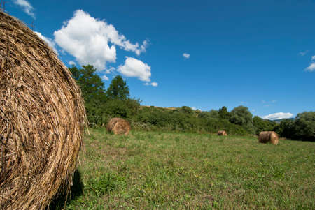 diminishing perspective: Hay Bale in green Field
