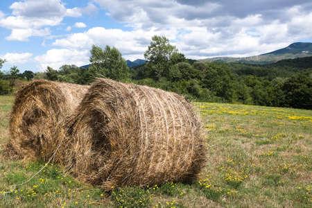 bales: Bales of straw Stock Photo