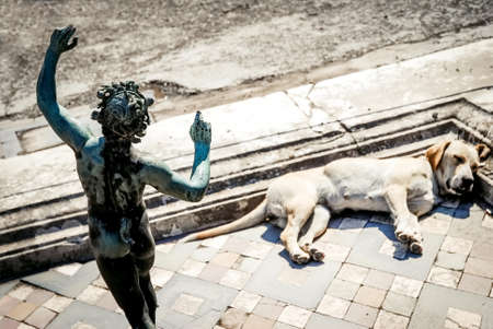 Pompeii ruins, dog sleeps in the impluvium of the house of faun Stock Photo
