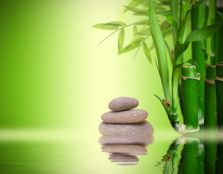 stones with flower: Zen garden