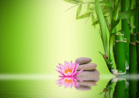 masajes relajacion: Jard�n zen Foto de archivo