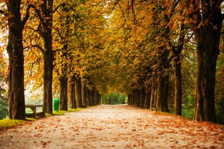 ljubljana: Promenade near Ljubljana castle, Ljubljana, Slovenia Stock Photo