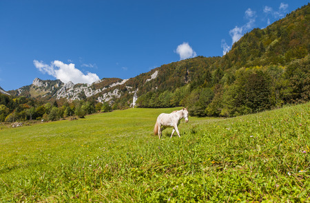 karavanke: Ljubelj mountain pass, nature, Slovenia