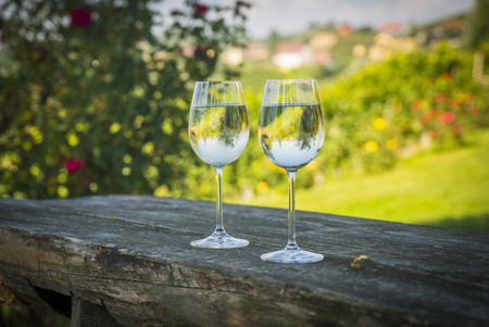 Wine road, Maribor, Slovenia Standard-Bild