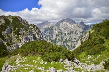View from Pokljuka mountain on neighborhood mountains, Slovenia Reklamní fotografie