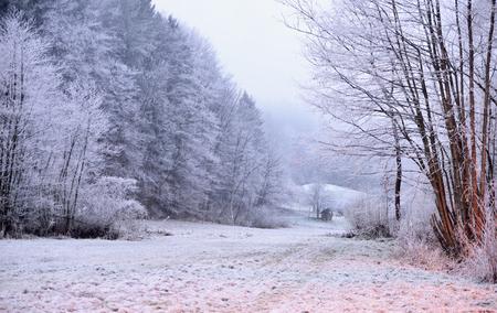 Winter scene in Tuhinj valley, Slovenia Reklamní fotografie