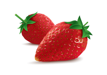 isolated vector strawberries Illustration