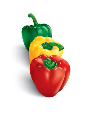 black pepper: red yellow and green peppers