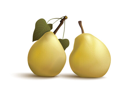 healthful: Isolated pears on the white background Illustration