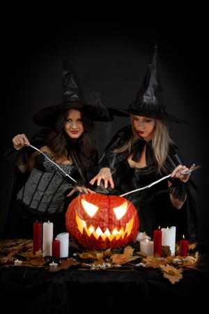 Halloween witches photo