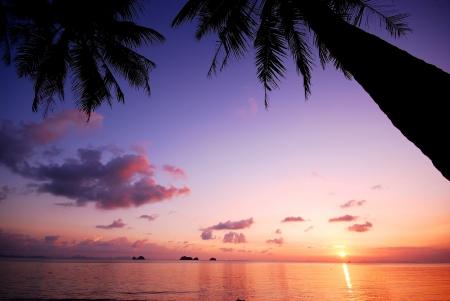 Sea beach zonsondergang achtergrond reizen thailand kokosnoot natuur Stockfoto