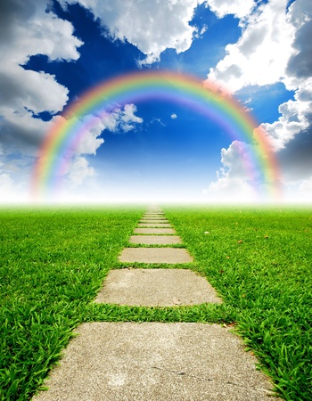 Rijst veld manier op het groene veld achtergrond wolk bewolkt regenboog