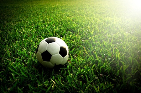 football stadium: football green grass ball stadium football field game sport background for design
