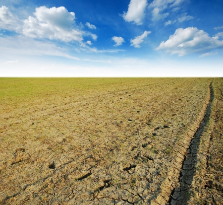 Soil Background mud puddle marsh well blue sky rice green grass Stock Photo
