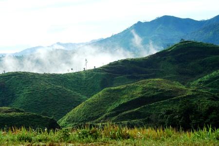 Mountain fog in thailand photo