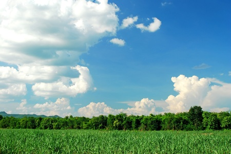 Mountain green grass and blue sky nature for backgrounds Stock Photo