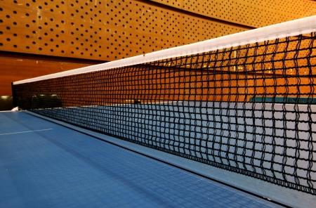 Net Table Tennis photo