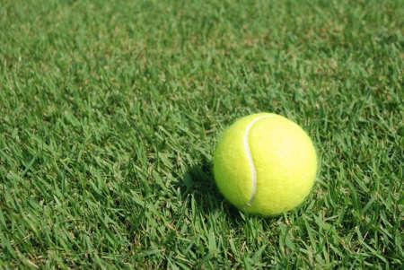 Tennisball in the Green grass
