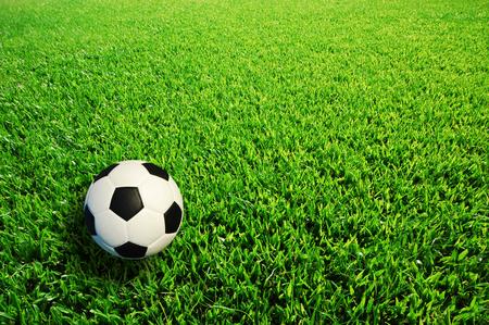 football green grass ball stadiun football field game sport background for design Imagens