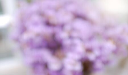 Purple flower blur background with space for text design