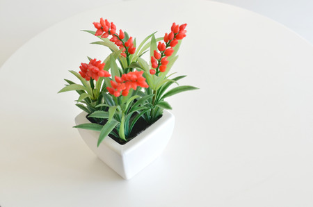 florescence: Red flower in vase on the table with white space background Stock Photo
