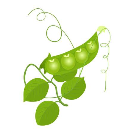 pois verts sur fond blanc pour la conception de l'emballage Vecteurs