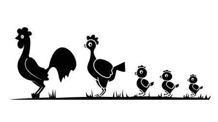 product range: vector image of black outline poultry, rooster chicken chick on a white background Illustration