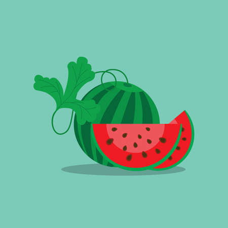 a round striped watermelon slice with seeds, vector illustration