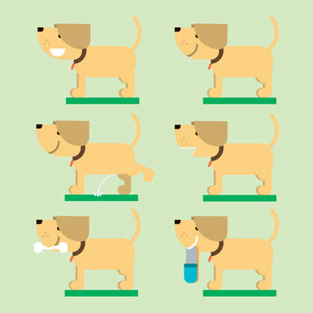 The set of the dog bears a bone, barks, brings the slippers to the master. Vector illustration for design.